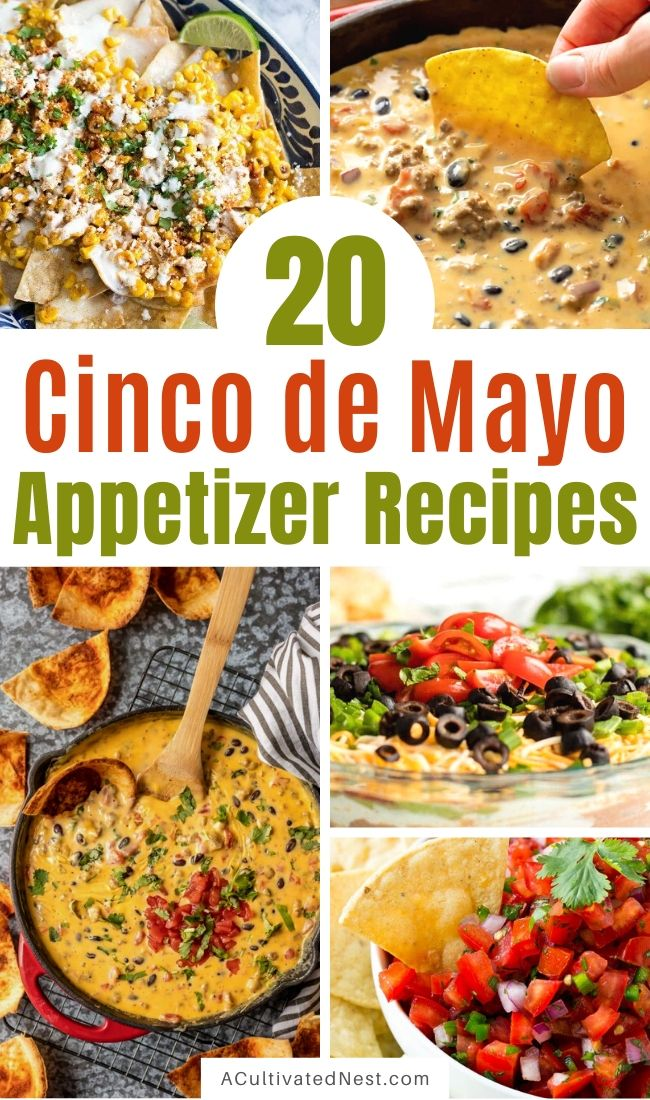 20 Cinco de Mayo Appetizer Recipes- Start your Cinco de Mayo party off right with some of these 20 delicious Cinco de Mayo appetizer recipes! They're so easy to make! | #appertizers #cincoDeMayo #MexicanFood #recipe  #ACultivatedNest
