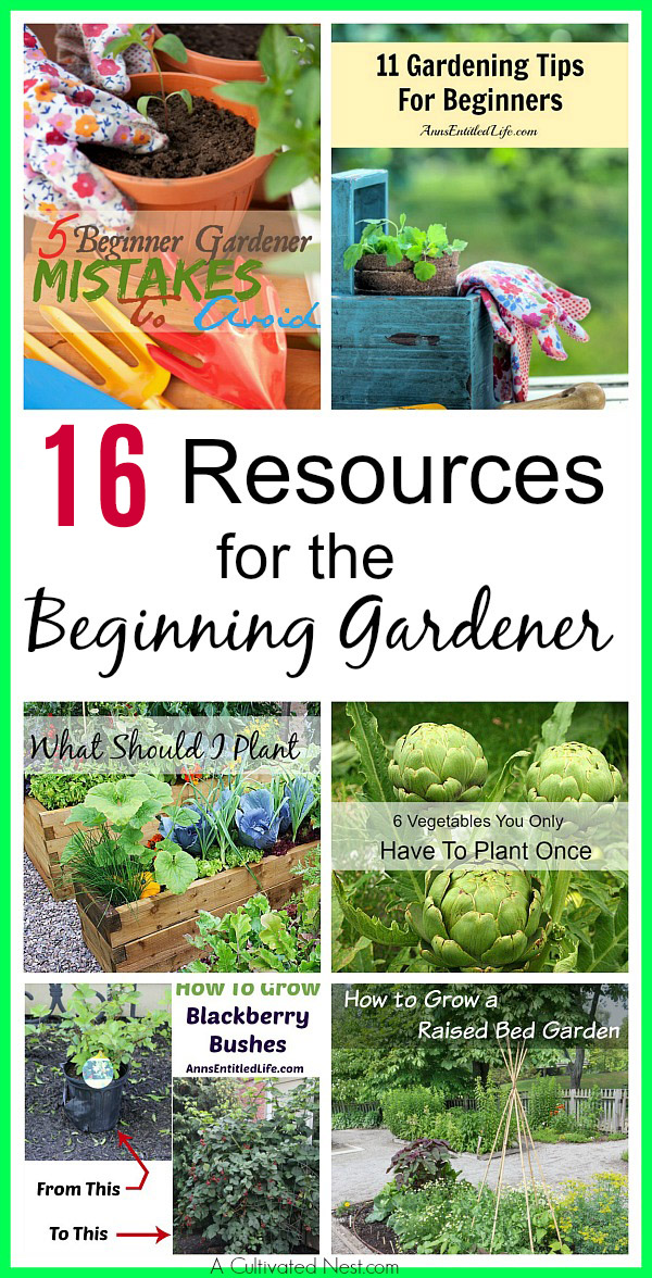 16 Resources for the Beginner Gardener