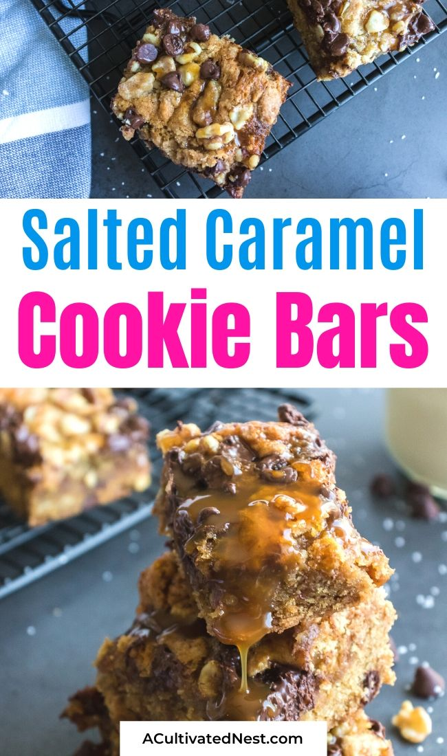 Delectable Salted Caramel Cookie Bars- If you want to bake a delicious treat, you have to try these delectable salted caramel cookie bars! One taste and you will be addicted! They are soft, chewy, and full of chocolate, caramel, and nuts. | #recipe #dessertRecipe #cookieBars #baking #ACultivatedNest