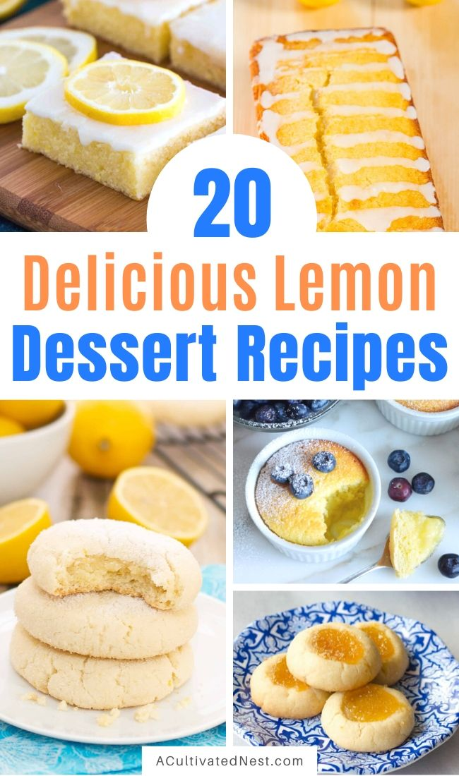 20 Incredible Lemon Dessert Recipes- If you want to bake a treat to brighten someone's day, then you need to check out these delicious lemon dessert recipes! They're all so tasty, and smell so good! | summer lemon recipes, citrus recipes, citrus desserts, #lemon #recipe #baking #dessertRecipe #ACultivatedNest