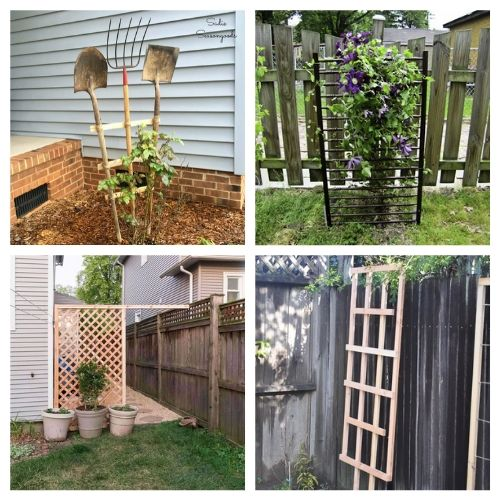 20 Gorgeous DIY Trellis Designs- Add some charm and character to your yard with these gorgeous DIY garden trellises! They're functional and a lovely way to decorate your garden! | #DIY #garden #trellis #gardenDIY #ACultivatedNest