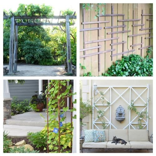20 Gorgeous Garden Trellis DIYs- Add some charm and character to your yard with these gorgeous DIY garden trellises! They're functional and a lovely way to decorate your garden! | #DIY #garden #trellis #gardenDIY #ACultivatedNest