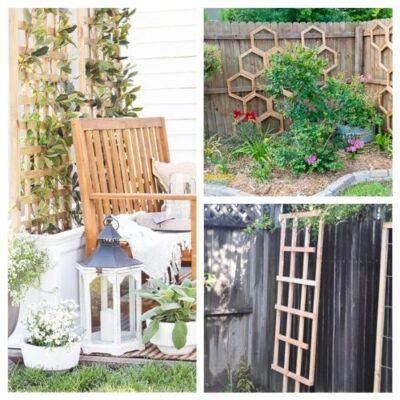 20 Gorgeous DIY Garden Trellises
