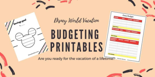 Disney World Budget Planning- These fabulous free printable savings trackers will help you get your finances in order and ready for whatever you are saving for! | #savingsTracker #saveMoney #moneySavingTips #freePrintables #ACultivatedNest