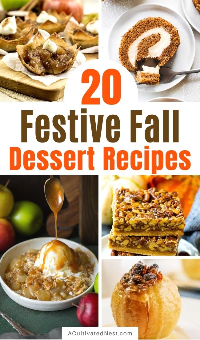 20 Festive Fall Dessert Recipes- Make your fall extra delicious with these drool-worthy festive fall dessert recipes! They all taste delicious, and are so easy to make! | fall pumpkin dessert recipes, fall food, #recipe #desserts #fallRecipe #recipes #ACultivatedNest