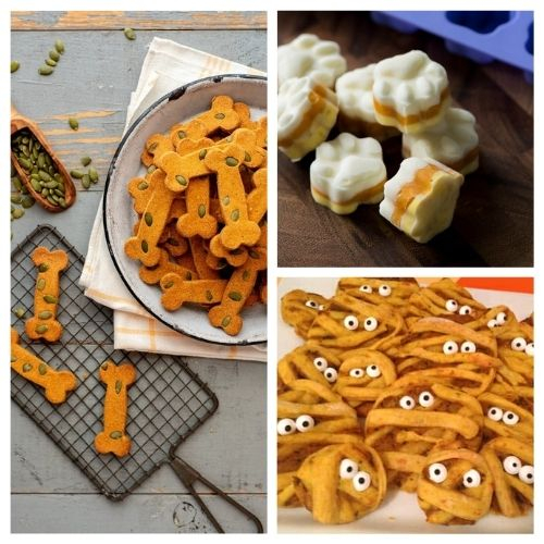 20 Homemade Fall Dog Treats- Your pooch is going to love you when you give him any of these homemade fall dog treats! They are super easy to make! | homemade Halloween dog treats, #dogTreats #homemadeDogTreats #petTreats #diyDogTreats #ACultivatedNest