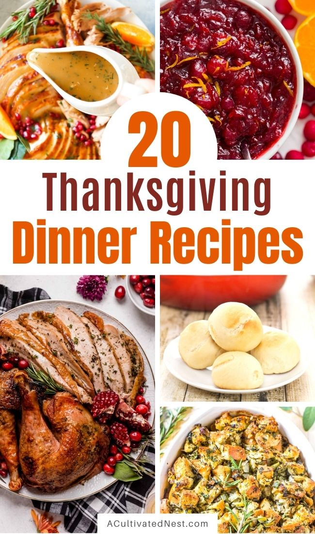 20 Traditional Thanksgiving Dinner Recipes- For a delicious and memorable Thanksgiving this year, you have to make these traditional Thanksgiving dinner recipes! They'll leave your holiday table looking stunning and your guests happy! | #Thanksgiving #ThanksgivingDinner #ThanksgivingRecipes #food #ACultivatedNest