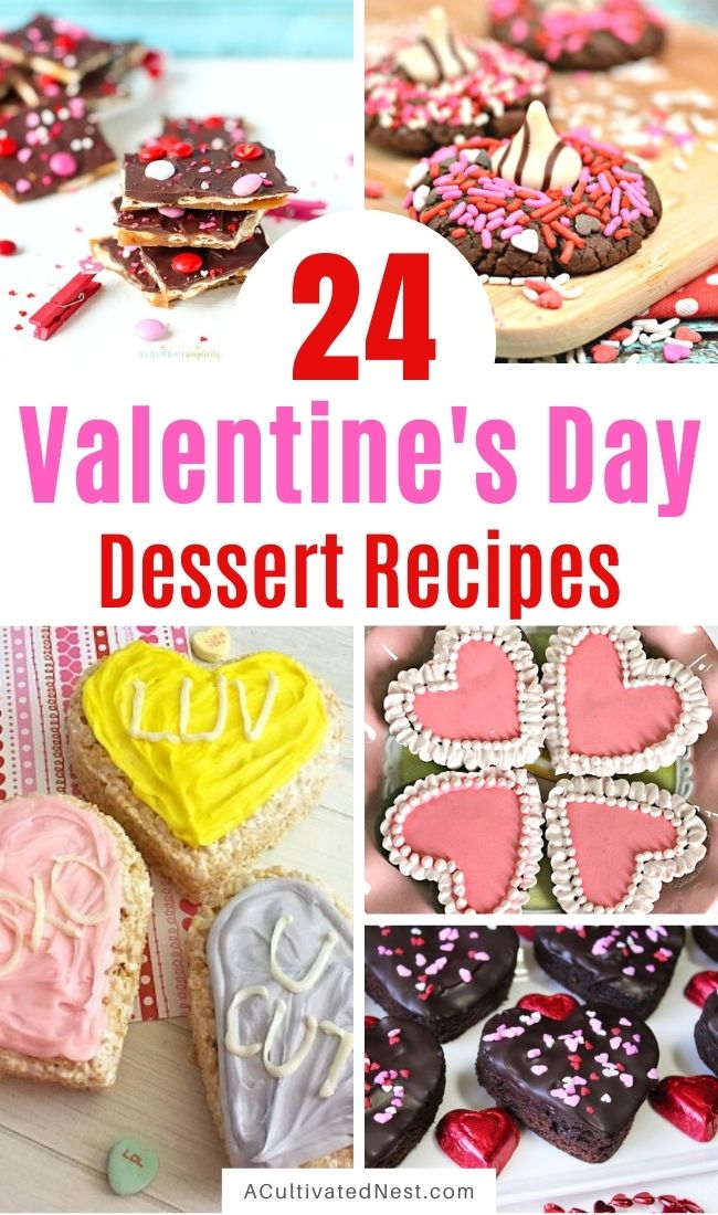 24 Valentine's Day Dessert Recipes- Make your Valentine's Day extra special this year with these delicious Valentine's Day dessert recipes! There are so many cute (and tasty) foods you can make for Valentine's Day! | #ValentinesDay #ValentinesDayRecipes #dessertRecipes #dessertIdeas #ACultivatedNest
