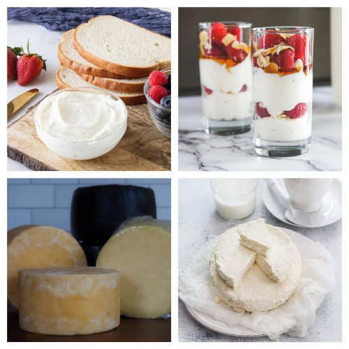 16 Delicious Homemade Dairy Products- If you want to save money and know what's in your food, then you'll love these homemade dairy products! They are simple, delicious, and frugal recipes that the whole family will enjoy! | homemade butter, #homemade #dairyProducts #recipes #homemadeCheese #ACultivatedNest