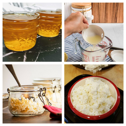 16 Delicious Dairy Product Recipes- If you want to save money and know what's in your food, then you'll love these homemade dairy products! They are simple, delicious, and frugal recipes that the whole family will enjoy! | homemade butter, #homemade #dairyProducts #recipes #homemadeCheese #ACultivatedNest