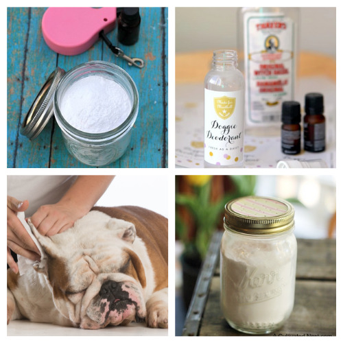12 Homemade Dog Grooming Products- These DIY dog grooming products will get your dog clean and smelling great! Homemade pet supplies are also a great way to save money! | homemade dog shampoo, homemade dog ear cleaner, homemade dog eye wipes, #petSupplies #dogGrooming #saveMoney #DIYs #ACultivatedNest