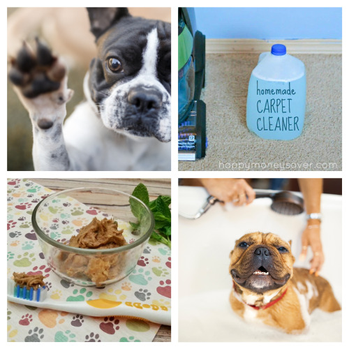 12 DIY Dog Cleaning Products- These DIY dog grooming products will get your dog clean and smelling great! Homemade pet supplies are also a great way to save money! | homemade dog shampoo, homemade dog ear cleaner, homemade dog eye wipes, #petSupplies #dogGrooming #saveMoney #DIYs #ACultivatedNest